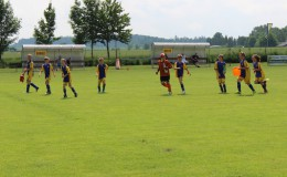 Fotbalové hřiště Svratouch